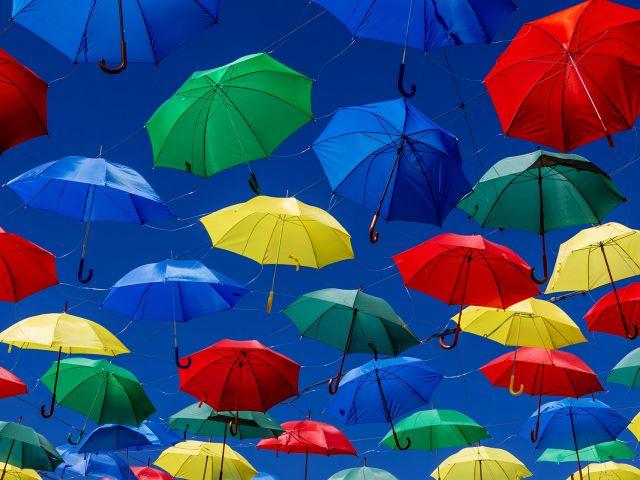 vive-la-vida-de-colores
